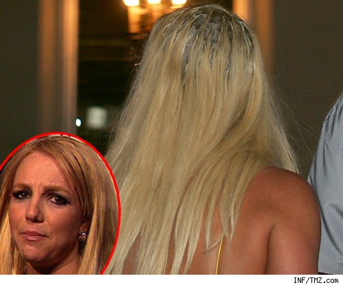 britney_spears_extensions2_-1